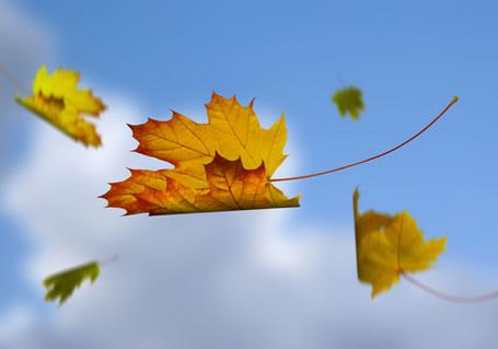 描写秋天景色的诗句